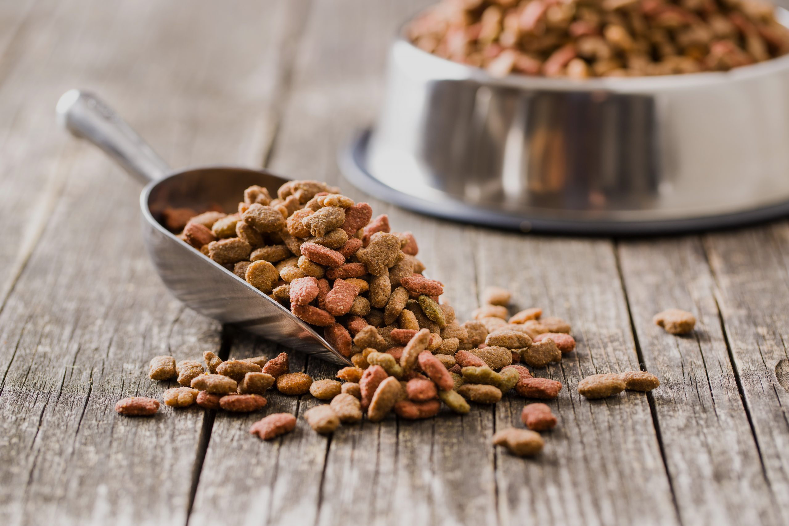 Selling Pet Foods Like A Pro: Furry Friends Will Love This!
